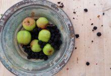 Berries: vase or jar?